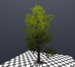 Vegetation in NeoAxis 1.1